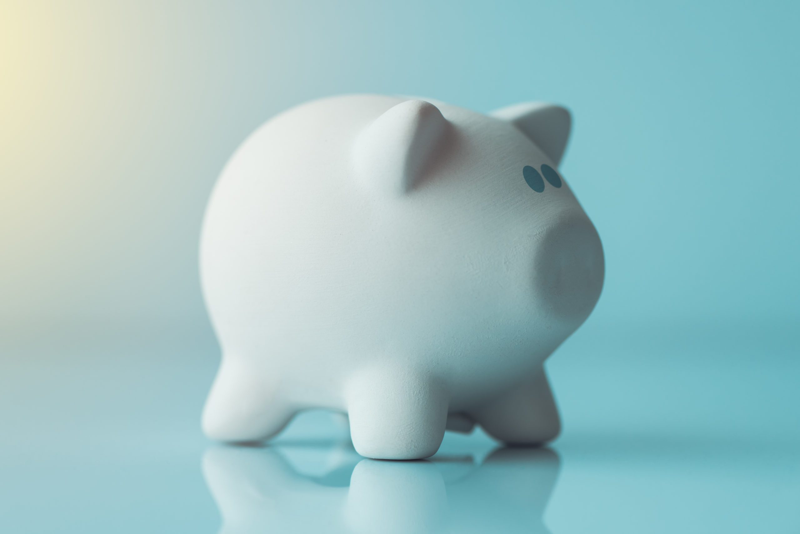 Piggy coin bank lit by the morning sunlight